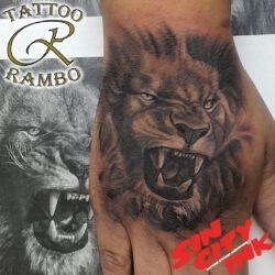 Löwe auf Hand